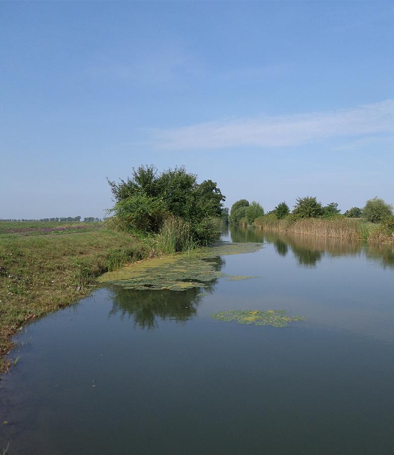vizeink-csatorna